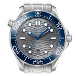Omega Seamaster Professional Diver 300 CoAxial Chronometer 210.30.42.20.06.001